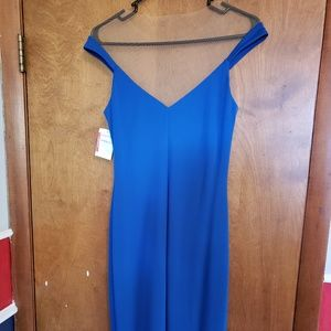 Royal Blue Dress with Nude Netting